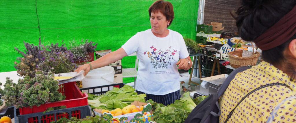 Rosa Casanellas. Verdures i productes silvestres
